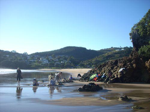 Hot Water Beach (Neuseeland_DSCI0446.JPG) wird geladen. Work and Travel Australia..
